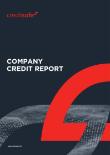 Creditsafe Business Index Report